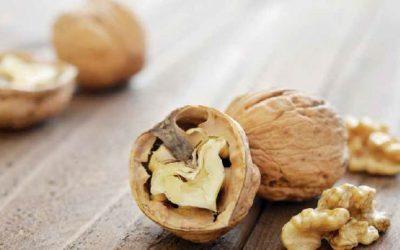 Ernährungsinterventionen zur Senkung des LDL-Cholesterins
