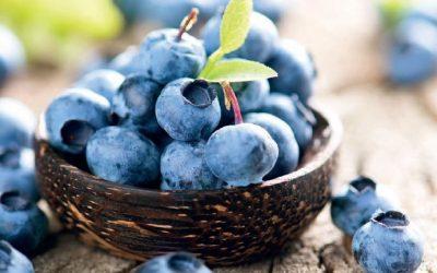 Nordische Ernährung statt Mittelmeer-Diät?